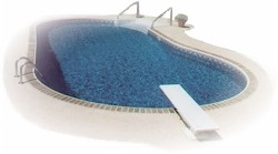 Kidney Shape Pool Starting at $5,815.00